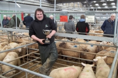 Easter Show of Spring Lambs